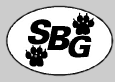 Shepherd Business Group Logo